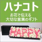 ohana-style ハナコト
