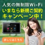 お得Wifi.com