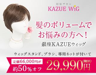 銀座KAZUE WIG(女性用ウィッグ)