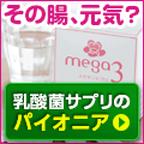 乳酸菌サプリメント「メガサンA150」