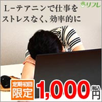 ぐっすりずむ(1000円税込)